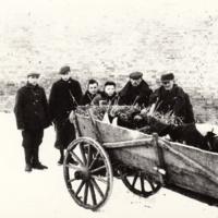 Zamordowani 16/17 stycznia 1945 r. na dziedzińcu ratusza w Ciechanowie  [Dokument ikonograficzny].